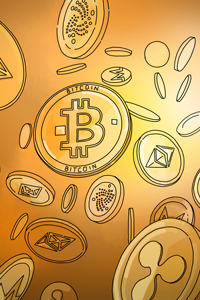What is the demographic of cryptocurrency investors